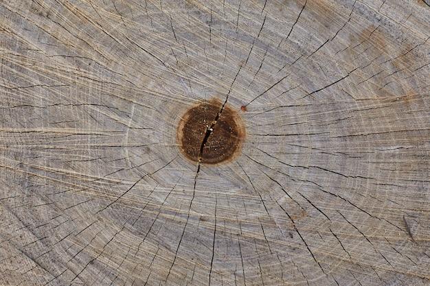 Bouchent la texture du bois ancien pour le fond