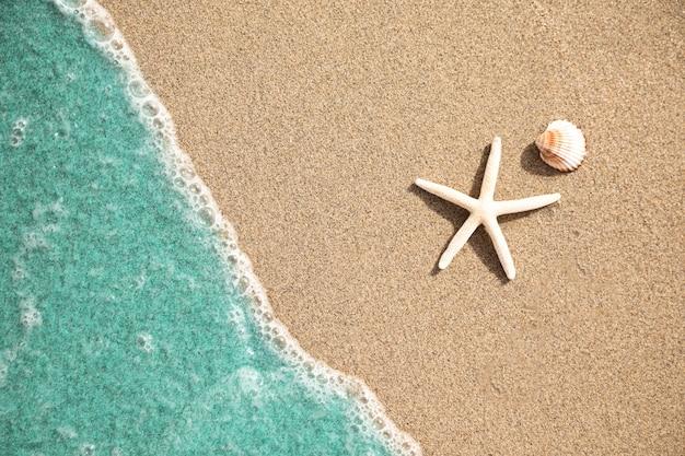Bouchent la vue de dessus de l'eau sur la plage de sable tropicale