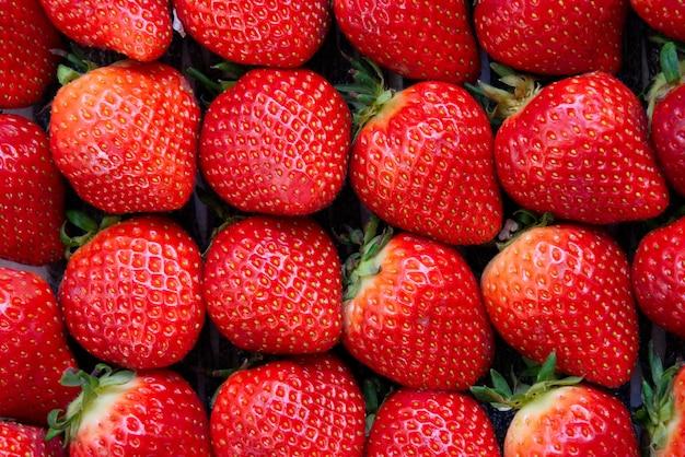 Bouchent la vue sur des dizaines de fraises rouges fraîches de la vue de dessus.