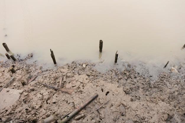 La boue apparaît à marée basse le long de la rivière