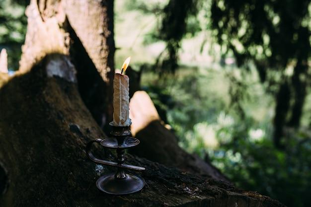 Bougie allumée dans le concept ésotérique occulte de forêt enchantée
