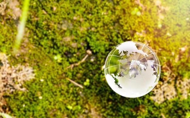 Boule de globe en verre de cristal de terre sur la mousse dans une forêt journée mondiale de l'environnement
