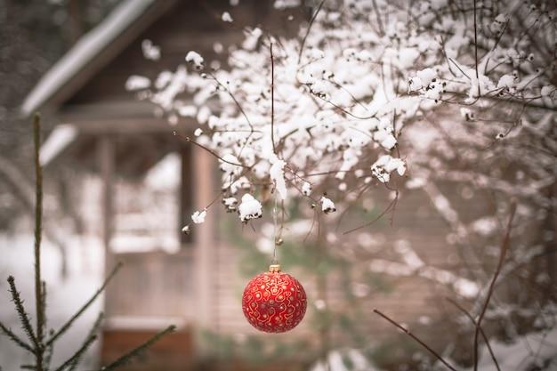 Boule de noël sur une branche d'arbre