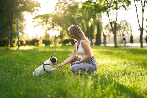 Bouledogue français donnant la patte au propriétaire féminin dans le parc