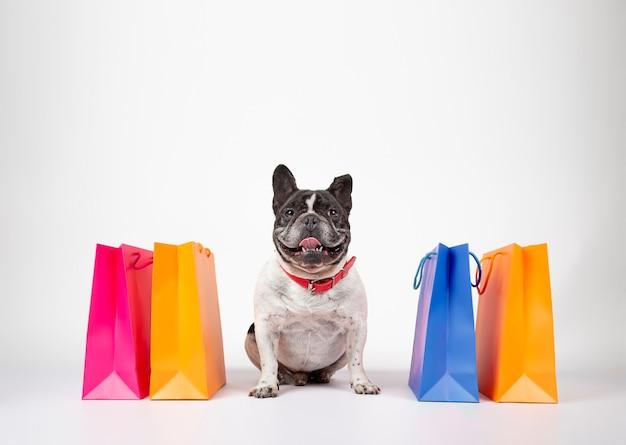 Bouledogue français avec des sacs à provisions