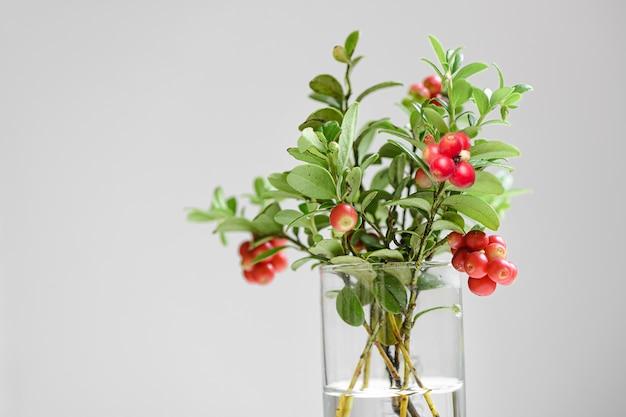 Bouquet d'airelles aux fruits rouges sur blanc