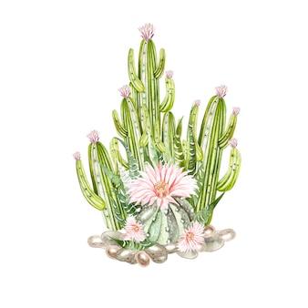 Bouquet d'aquarelle avec cactus et plantes succulentes