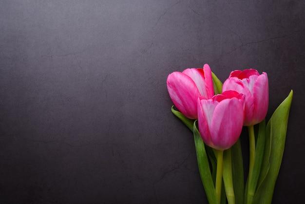 Un bouquet de beaux gros plan de tulipe rose vif contre un mur gris foncé.