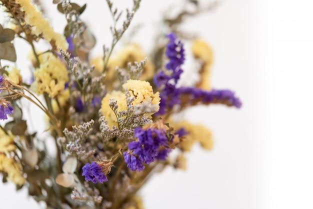 Bouquet de belles fleurs séchées sur fond blanc