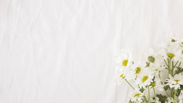 Bouquet de belles fleurs sur des tiges vertes