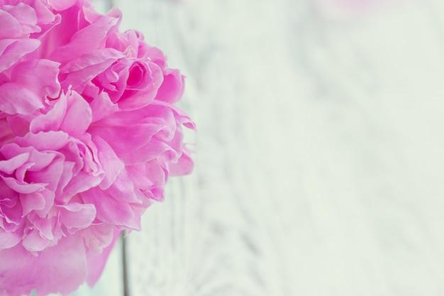 Bouquet de belles pivoines rose pâle dans un vase blanc sur fond de tableau blanc.