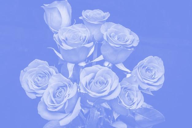 Bouquet de belles roses teintées de bleu. composition florale