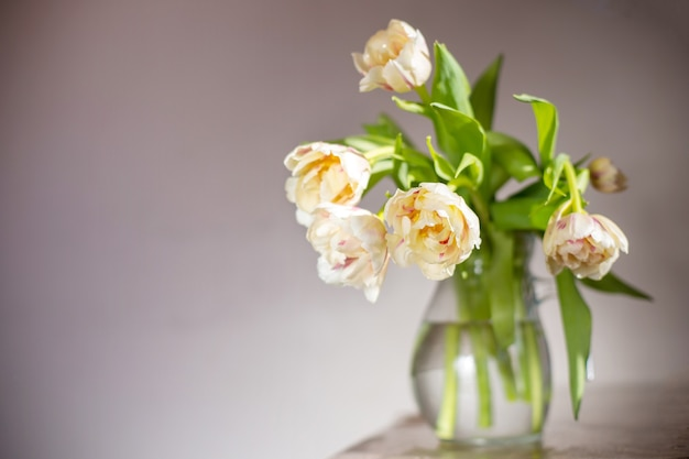 Bouquet de belles tulipes espace copie célébration de la journée internationale de la femme fond de mur blanc intérieur scandinave