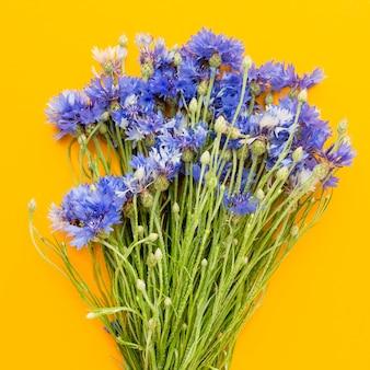 Bouquet de bleuets vue de dessus