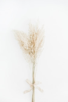 Bouquet de branches sèches pâle avec noeud en ruban beige