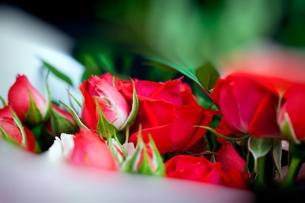 Bouquet cadeau avec des roses rouges et des oeillets roses, de belles fleurs pour un cadeau