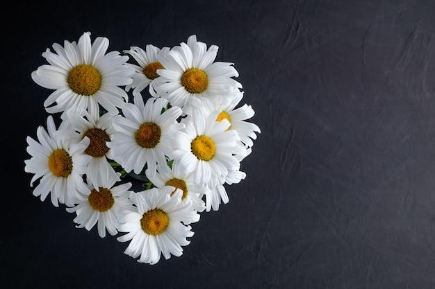 Un bouquet de camomille sur fond sombre, symbole de la prise de conscience de la lutte contre la tuberculose.