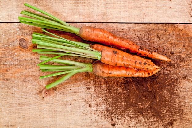 Bouquet de carottes fraîches