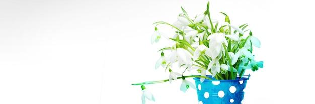 Bouquet coloré de perce-neige dans un arrosoir. concept de printemps et de jardinage.