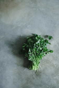 Bouquet de coriandre sur une table en béton