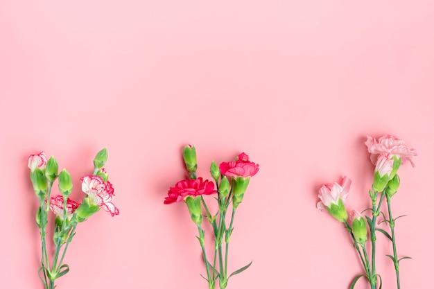 Bouquet de différentes fleurs d'oeillets roses sur fond rose