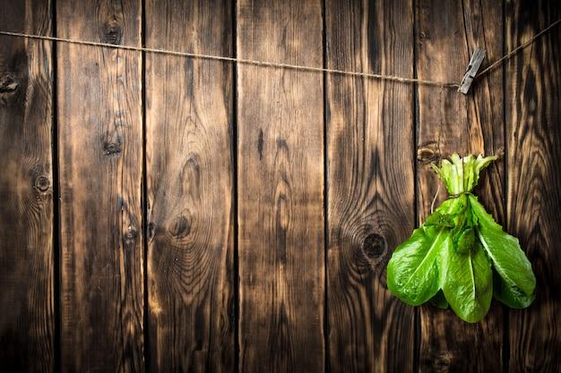 Bouquet de feuilles fraîches accroché à une chaîne sur fond de bois