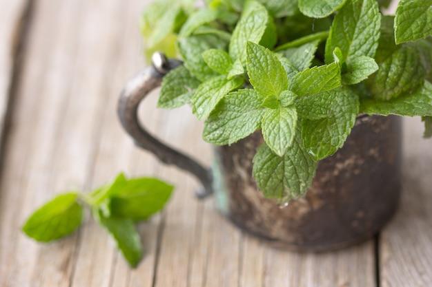 Bouquet de feuilles de menthe bio vert frais sur table en bois