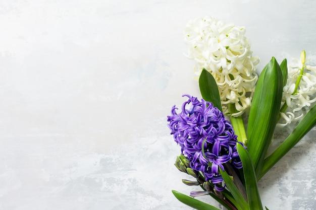 Bouquet de fleur de jacinthe sur fond de pierre ou d'ardoise fond de fleurs de printemps vue de dessus