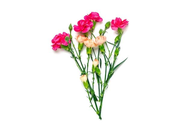 Bouquet de fleur d'oeillet rose isolé sur blanc