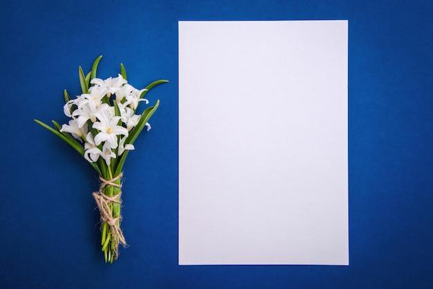 Bouquet de fleurs blanches chionodoxa et une feuille de papier vierge sur fond bleu
