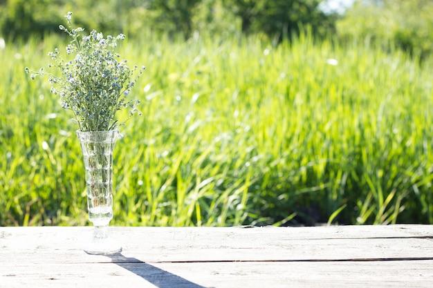 Bouquet de fleurs bleues, à ciel ouvert, lumière dure