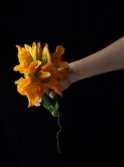 Bouquet de fleurs de citrouille tenue en main avec fond sombre