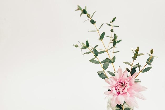 Bouquet de fleurs sur fond blanc