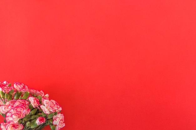 Bouquet de fleurs fraîches merveilleuses