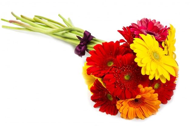 Bouquet de fleurs de gerbera coloré