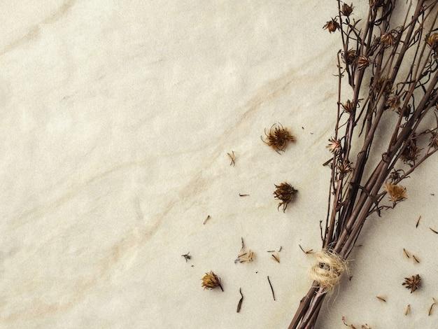 Bouquet de fleurs de gypsophile séchées pour la décoration