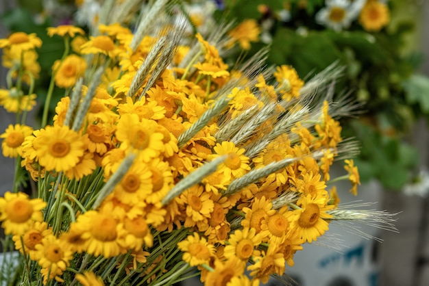 Bouquet de fleurs jaunes et de blé. photo en gros plan