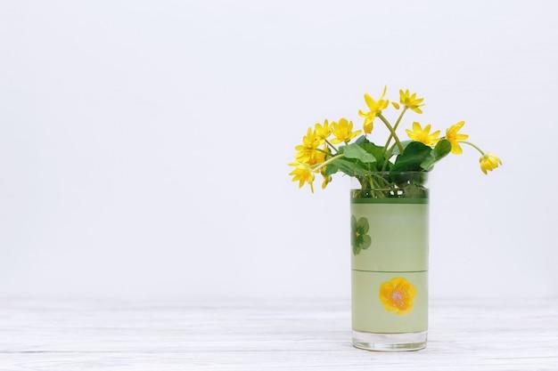 Bouquet de fleurs jaunes fraîches sur mur blanc. fleurs sauvages de printemps fleurs jaunes en verre isolé