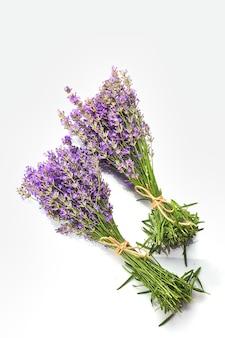 Bouquet de fleurs de lavande isolé