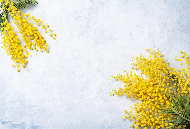Un bouquet de fleurs de mimosa jaune repose sur le béton léger