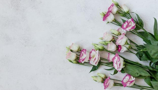 Bouquet de fleurs roses eustoma sur fond de béton blanc. fleurs de printemps. bannière, mise à plat, espace copie