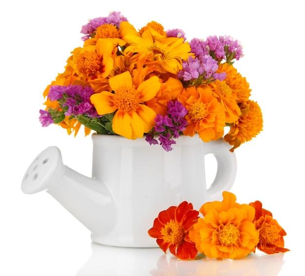Bouquet de fleurs de souci dans l'arrosoir isolé sur blanc