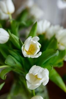 Bouquet de fleurs de tulipes blanches se bouchent