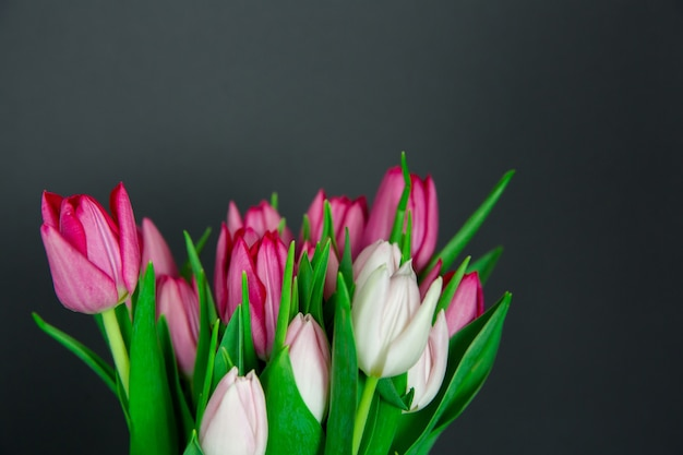 Bouquet de fleurs de tulipes fraîches de saison sur fond noir. bourgeons blancs et roses