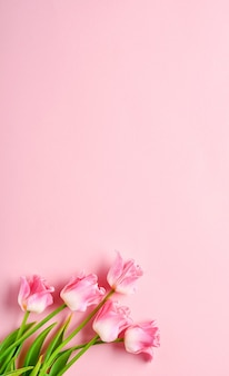 Bouquet de fleurs de tulipes roses sur fond rose