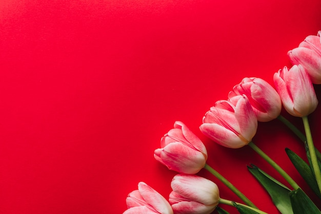 Bouquet de fleurs de tulipes roses