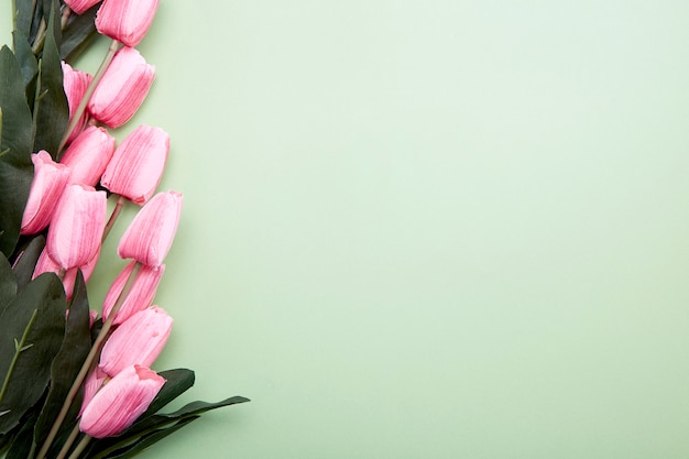 Bouquet de fleurs de tulipes sur vert