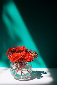 Bouquet de fleurs vineuses dans un vase avec de l'eau