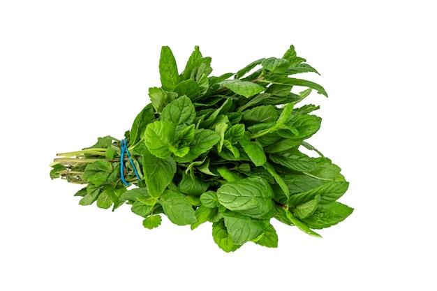 Un bouquet frais de menthe verte