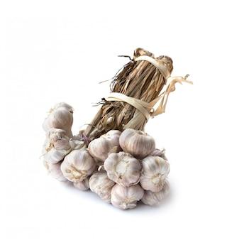 Bouquet de gousses d'ail bio